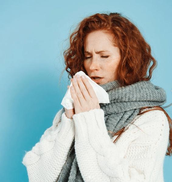 Remeis naturals pel refredat! L'Equinacea